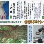 『木育セミナー』[8月5日(土)]NPO法人メリーゴーランド @ 能代山本広域交流センター | 能代市 | 秋田県 | 日本